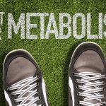 Aging Metabolism Understood